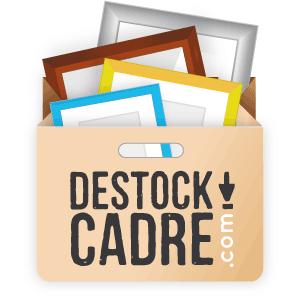 Logo du site Destock Cadre